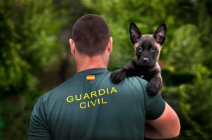 Premio Internacional Foto policial Javier Montero